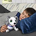 Собака робот Zoomer Playful Pup Responsive Robotic Dog Spin Master, фото 6