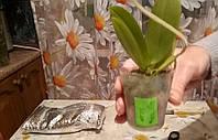 Полотно ППЭ как утеплитель для транспортировки растений