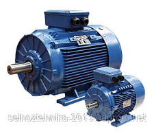 Электродвигатель АИР 56 А2 0,18кВт 3000 об./мин. (фланец)