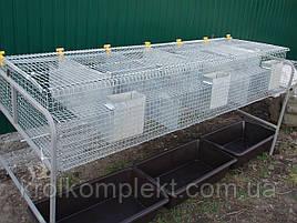 Клетка для кролей  КС -6 С (самцов) .