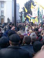 Юлия Тимошенко на митинге перед Верховной радой 16.11.2010