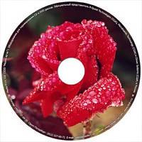 Печать на CD, печать на DVD дисках Одесса