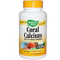 Коралловый кальций (витамины и минералы), Nature's Way, 180 капсул