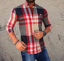 Чоловічі сорочки, піджаки