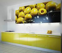 Кухня фасады с фотопечатью, фото 1