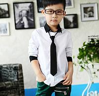 Красивая рубашка с галстуком для мальчика