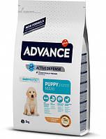 Сухой корм для собак Advance Dog Maxi Puppy 3 кг. для щенков собак крупных пород с курицей и рисом