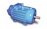 Электродвигатель крановый МТF 132 LB6, фото 4
