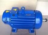 Крановый электродвигатель МТН 411-6, фото 3