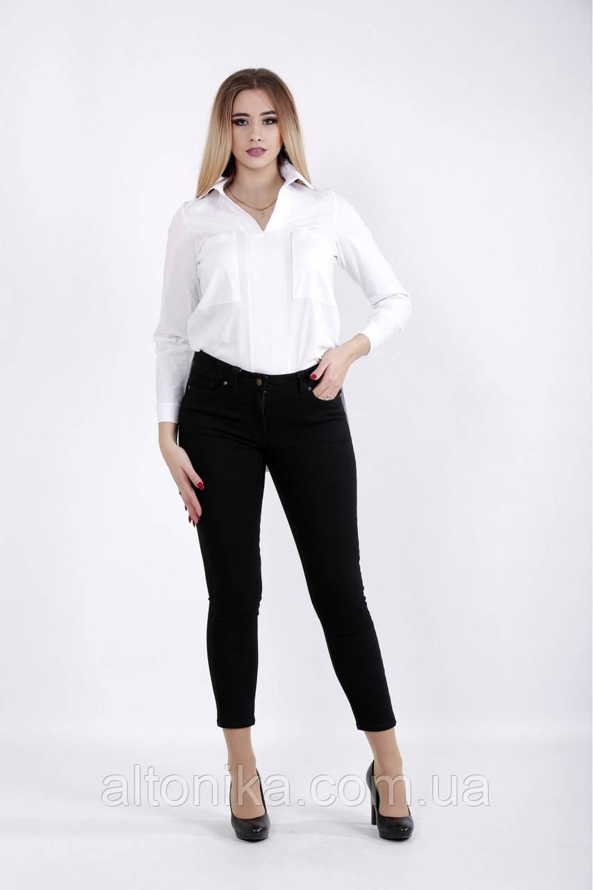 Женская деловая блузка | 42-74