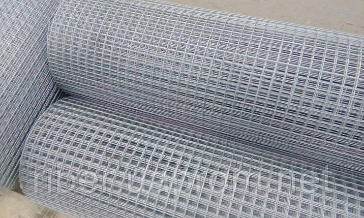 Сетка сварная оцинкованная 25х12,5х0,6мм 1/30м, фото 2