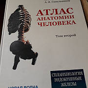 Атлас анатомії людини Синельников том 2