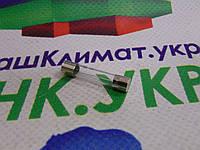 Предохранитель стеклянный для СВЧ-печи 6x30mm 1 A