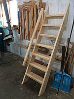 Лестница деревянная в погреб, фото 1