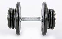 Гантель цельная профессиональная стальная RECORD (1шт) 35кг TA-7231-35