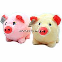 Мягкая игрушка Свинка C31170