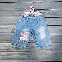 Шорты джинсовые для девочек оптом размеры 2-3 года