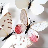 Бабочки 3D белые на магните, фото 1