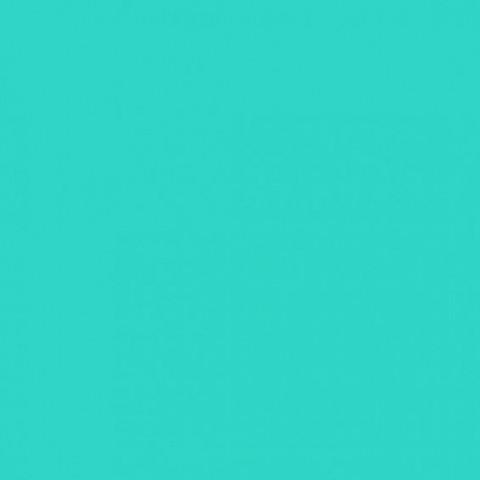 Глянцевые натяжные потолки Франция светло-зеленый L 628