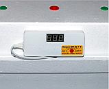 Инкубатор цифровой Квочка МИ-30-1 ручной переворот (ламповый), фото 2
