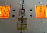 Інкубатор цифровий Рябушка на 100 яєць автоматичний переворот, з литим корпусом, Теном і вентилятором, фото 2