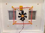 Інкубатор Теплуша автоматичний Теновий (з вентилятором і вологоміром), фото 6