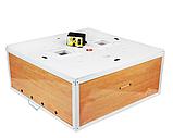 Инкубатор цифровой Курочка Ряба 130 яиц механический переворот усиленный, фото 2