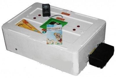 Инкубатор цифровой Курочка Ряба ИБ-63 с автоматическим переворотом яиц и вентилятором