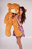 Плюшевий ведмедик Тедді карамель 120 см, фото 2