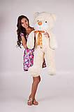 Плюшевий ведмедик Тедді кремовий 120 см, фото 2