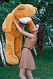 Плюшевый мишка Тедди карамель 160 см, фото 3