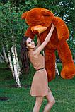 Плюшевий ведмедик Тедді коричневий 160 см, фото 4