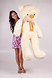 Плюшевий ведмедик Тедді кремовий 160 см, фото 3