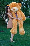 Плюшевий ведмедик Тедді карамель 180 см, фото 4