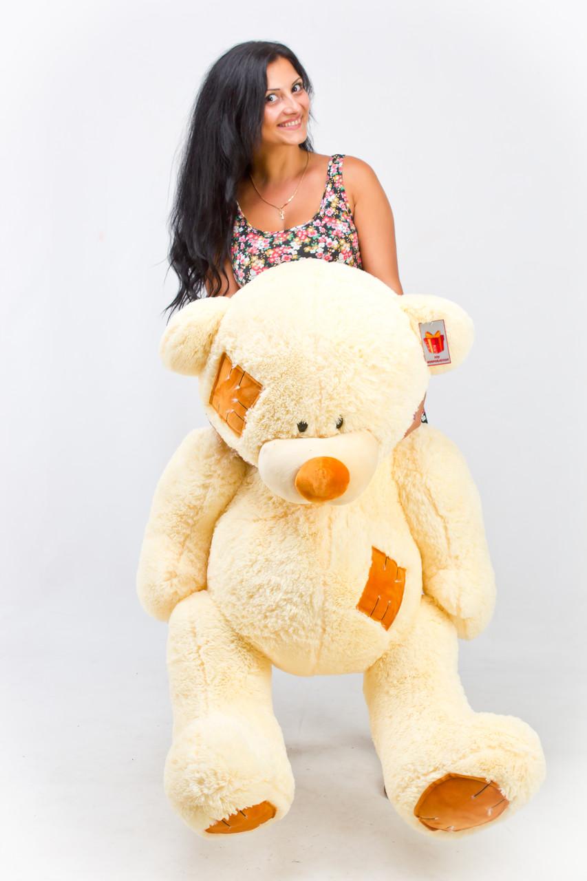 Большой медведь недорого