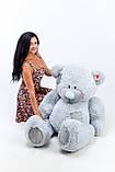 Сірий ведмедик Тедді 1.5 м, фото 2
