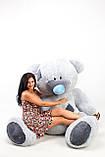 Самий великий плюшевий ведмедик сірий 250 см, фото 2