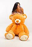 Плюшевый Мишка 200 см. Большой Плюшевый Медведь. Большая Мягкая игрушка Плюшевый Мишка 200 см., фото 2