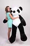 Плюшева панда 200 див. М'яка іграшка панда. Панда 200 см, фото 3