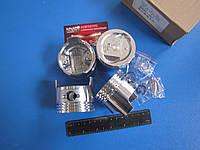 Поршень комплект FAW 1011 (ФАВ)