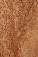 Шпон корінь вавовны, фото 1