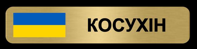 Золотой металлический бейдж для сотрудника полиции