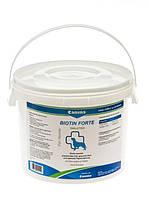 Кормовая добавка Canina Biotin Forte для собак, здоровье кожи и шерсти, 600 шт