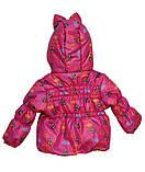 Детская демисезонная куртка и полукомбинезон для девочки, фото 2