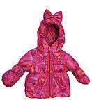 Детская демисезонная куртка и полукомбинезон для девочки, фото 4