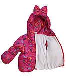 Детская демисезонная куртка и полукомбинезон для девочки, фото 5