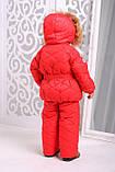 Зимняя куртка  и полукомбинезон  для девочки, фото 3