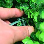 Искусственный шар самшит салатовый  54 см, фото 5