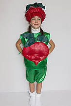 Дитячий карнавальний костюм Буряк (Буряк)