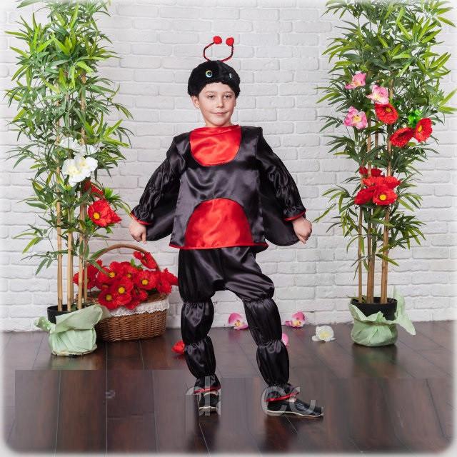 Карнавальный костюм Божья Коровка   мальчик